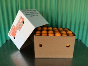 40lb citrus navel oranges arizona fruit Sale.